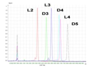 کروماتوگرافی گازی GC
